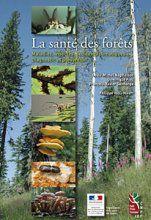 illustration La santé des forêts