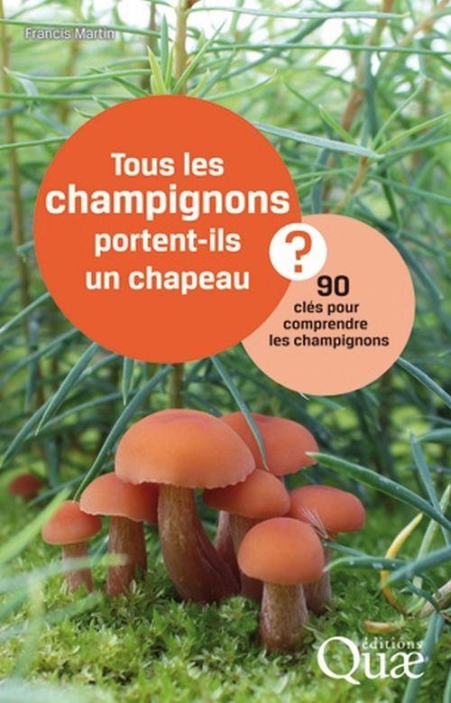 illustration Tous les champignons portent-ils un chapeau ? 90 clés pour comprendre les champignons