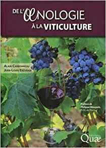 illustration De l'oenologie à la viticulture