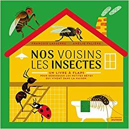 illustration Nos voisins les insectes – Un livre à flaps, pour débusquer les petites bêtes qui vivent dans la maison