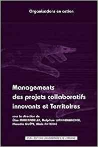 illustration Management des projets collaboratifs innovants et territoires