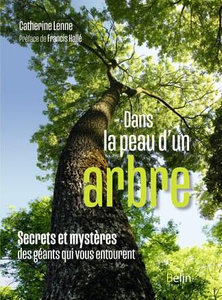 illustration Dans la peau d'un arbre : Secrets et mystères des géants qui vous entourent